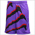 Ballist Claw Shorts 2000 DUNK