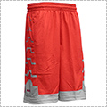 NIKE LeBron Driven Short