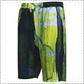 AKTR Blur Shorts