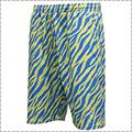 AKTR Zebra Shorts