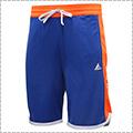 LEGIT Practice Shorts